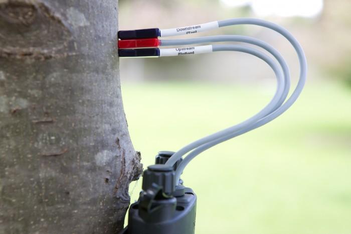 Sap flow meter